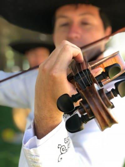 serenatas en san bernardo